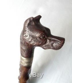 ANTIQUE ca 1900 AUSTRIAN WALKING STICK CANE WOODEN DOG HEAD HANDLE