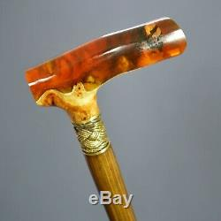 Amber style Hybrid Burl Handle Wooden Handmade Cane Walking Stick Unique # 6