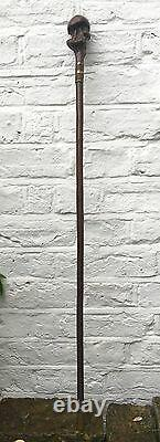 Antique Old RARE Wooden Round Root Ball Walking Stick