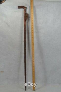 Antique cane walking stick hand carved bear knobby wooden stick original 1800