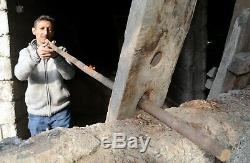 COBRA Walking Cane Stick Wood Wooden Handle Spiral Hand Carved Support OZL23