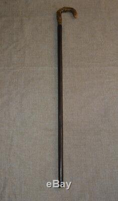 Egyptian Handcrafted Ebony Wood Walking Cane, Buffalo Horn Handle Wooden Stick