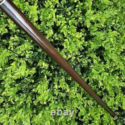 Walking Cane Walking Stick Handmade Wooden Cane Stabilized in Cactus Juice Y36
