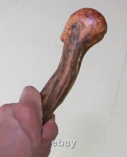 Bâton Rare De Marche De Crâne En Bois De Canne 35 Haut