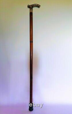 Brass Bâton De Marche En Bois Avec Phalange En Plastique Caché En Laiton, Bois