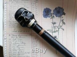 Canne De Marche Crâne Cannes En Bois Canne De Marche Noire Blackthorn Stick Main Nw28