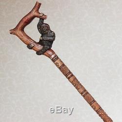 Canne Personnalisée Avec Manche Sculpté À La Main Et Manche De Randonnée Sloth Wood