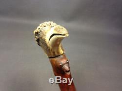 Collection De Cannes De Marche Old Shadow Switch Stick En Bois Et Bouton Head'bird