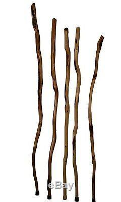 Grand Bois Bâton De Randonnée, Handcrafted Diamant Willow Long Bois Marcher Personnel États-unis