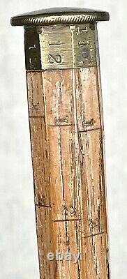 Vintage Antique 19c Système De Mesure En Bois Swagger Knob Bâton De Marche Canne Vieux